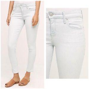 Level 99 Liza Ankle Skinny Jean Subtle Stripe 30